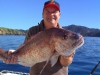 anchorage-charters-bay-of-islands-winter-snap