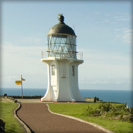 Cape Reinga Coach Tour