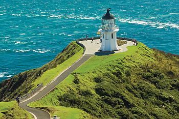 Great Sights - Cape Reinga Tour